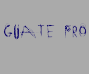Logo der Stiftung Guate Pro